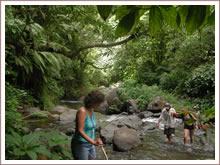 Dschungel trekking